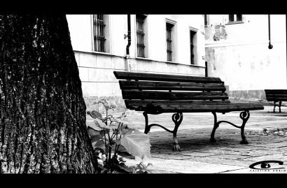 Panchina-Avigliana-Cristina-Borio.jpg
