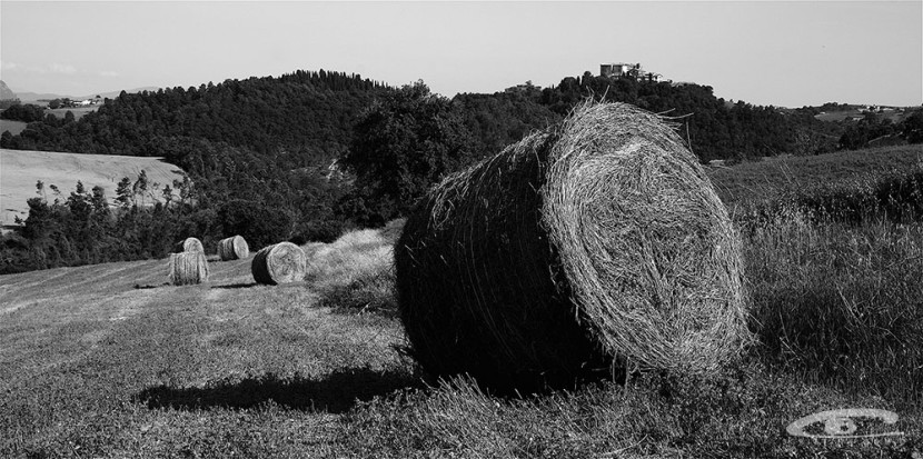 Umbria-Cristina-Borio.jpg